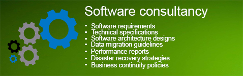 Software consultancy