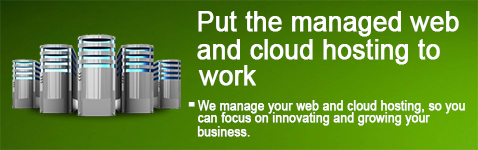 Web Hosting And Cloud Service